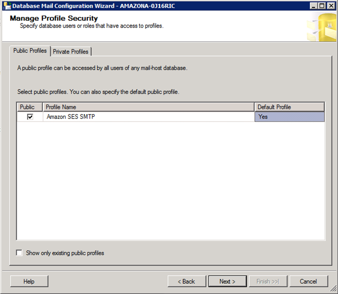 Microsoft SQL Server Profile Security